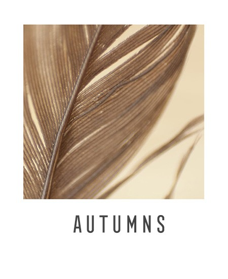 raw-autumn_button_redesign_b.jpg