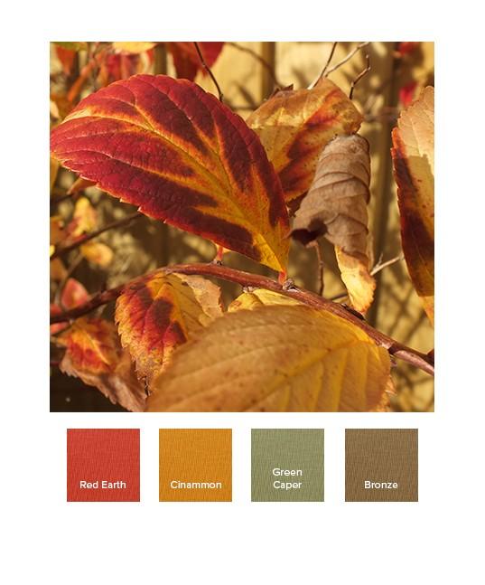 raw-autumn_aw19_a.jpg
