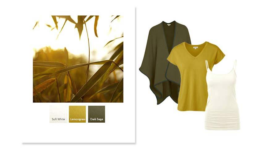 raw-autumn_1 - copy.jpg