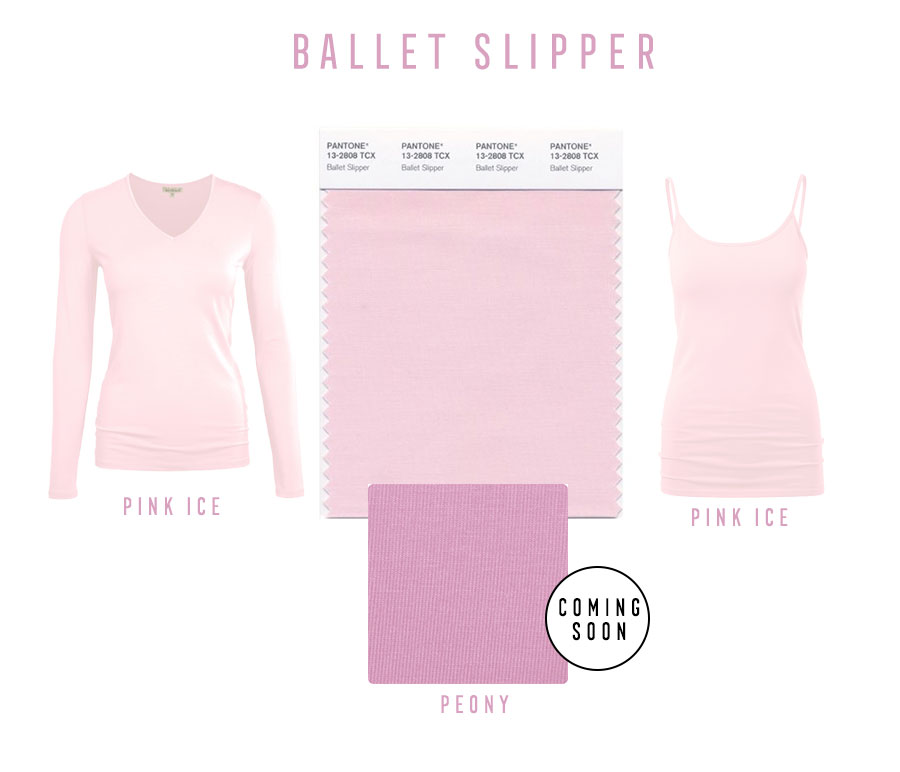 raw-ballet-slipper_a.jpg