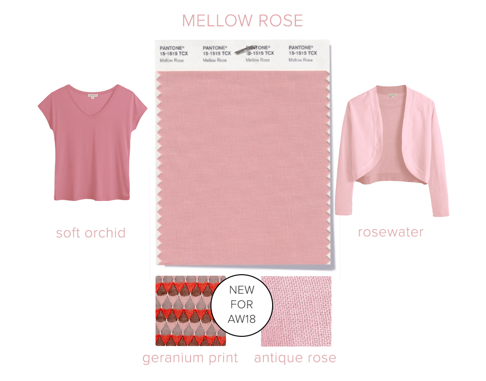 raw-mellow_rose.jpg