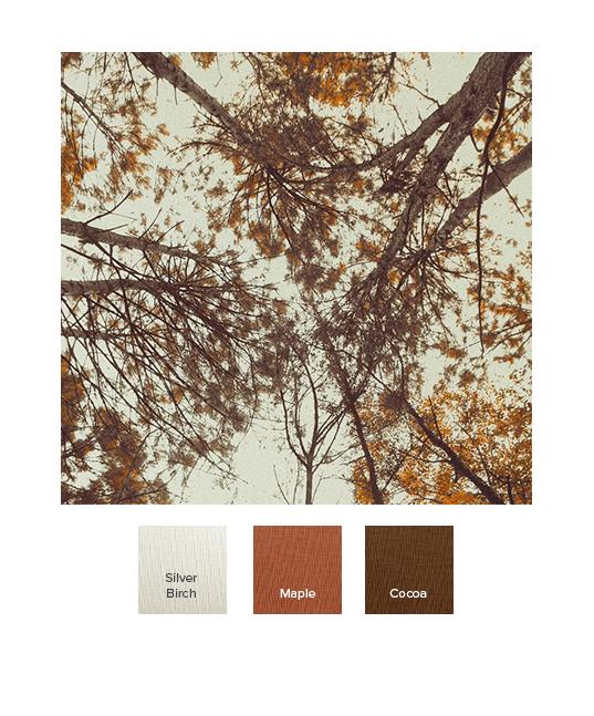 raw-autumn_aw19_o.jpg