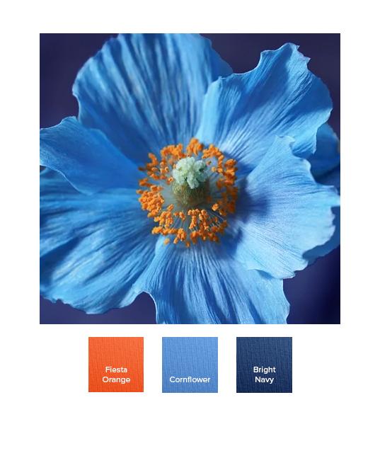 raw-spring_combination_ss20_m.jpg