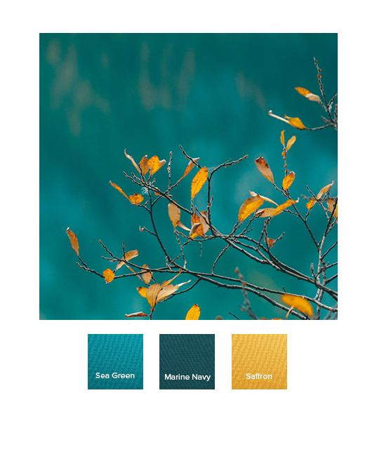 raw-autumn_combination_ss20_i.jpg