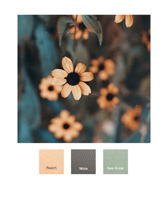 raw-autumn_combination_ss20_j.jpg