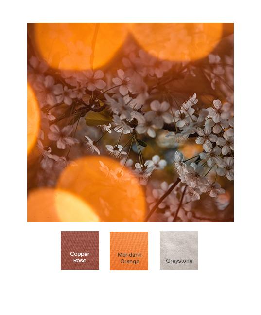 raw-autumn_combination_ss20_l.jpg