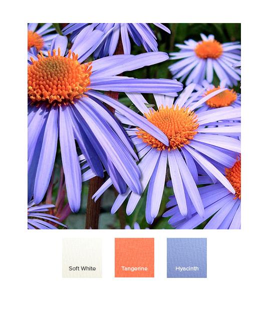 raw-spring_combination_ss20_c.jpg