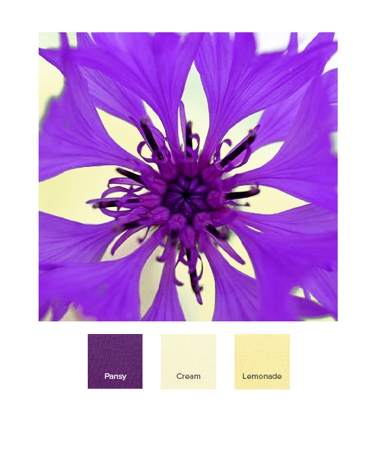 raw-spring_combination_ss20_q_edit.jpg