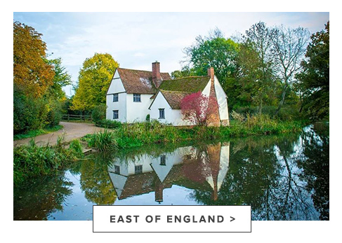 raw-colour_stylist_landing_page_aw20_east_of_england.jpg