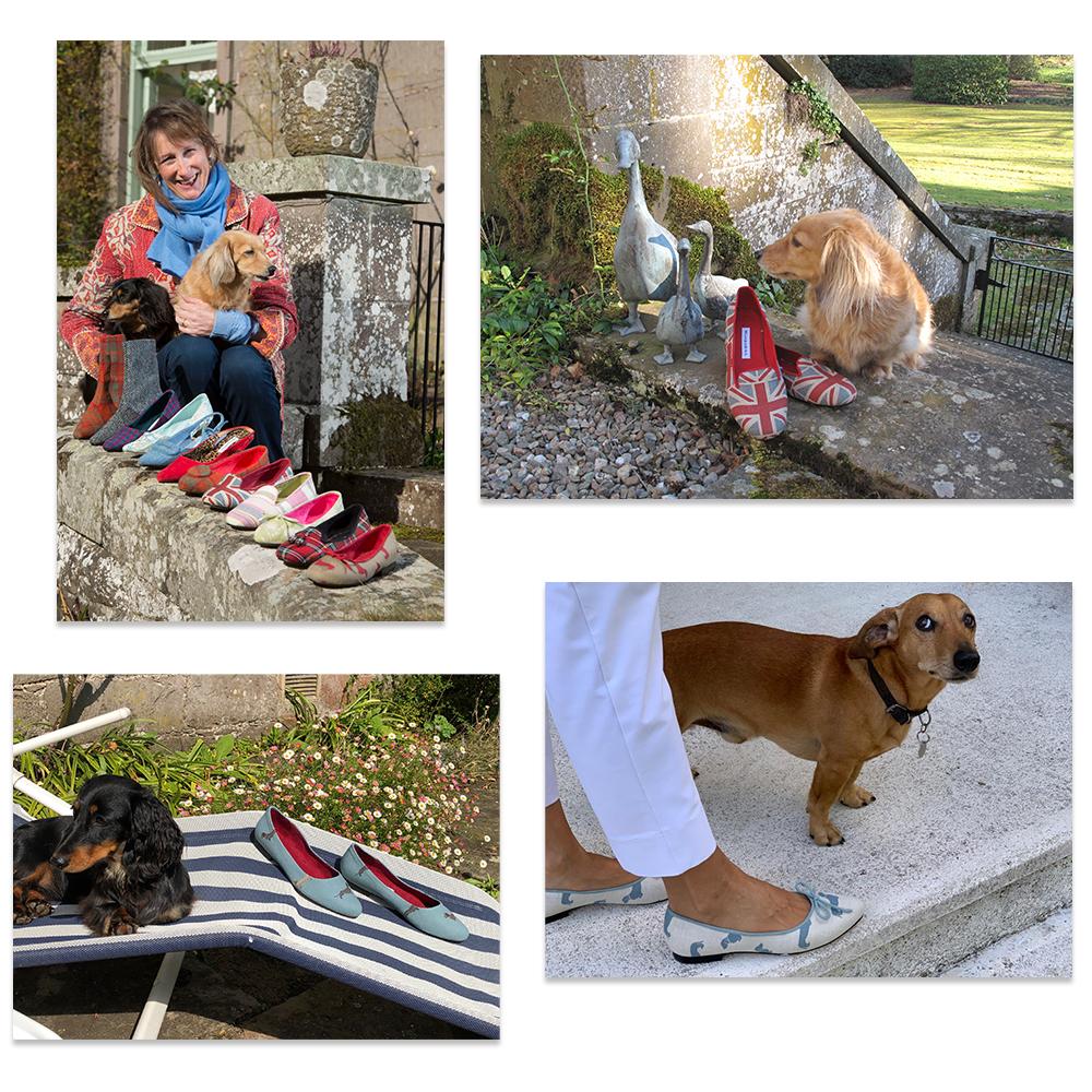 raw-dogs.jpg