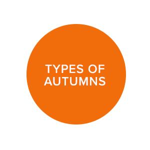 raw-link_autumns.jpg