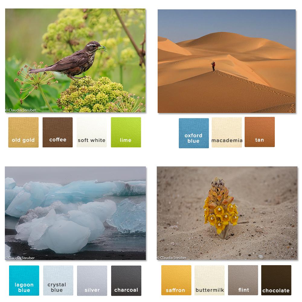 raw-colour_inspo_b.jpg