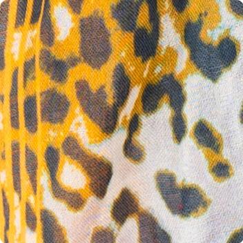Amber Leopard
