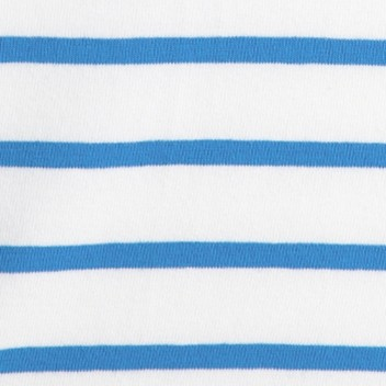 Dutch Blue Stripe